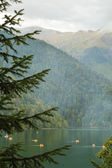 Katamaran ile dağ gölü — Stok fotoğraf