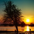 Foto Stock: Sunset