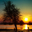 Stockfoto: Sunset