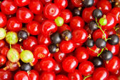 Background cherries — Stock Photo