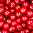 Cherry background. - Stock Photo
