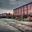 Several old freight carriages — Stock Photo