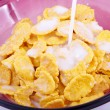 Corn-flakes — Stock Photo