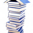 Stock Photo: Book house