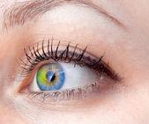 抽象的な人間の目 — ストック写真
