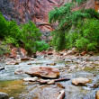River in Zion Canyon - Stock Photo