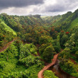 Landscape of Hawaii - Stock Photo