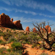 In Arches Canyon - Stock Photo