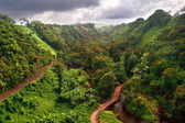 Paisaje de hawaii — Foto de Stock