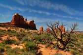 In Arches Canyon — Stock Photo