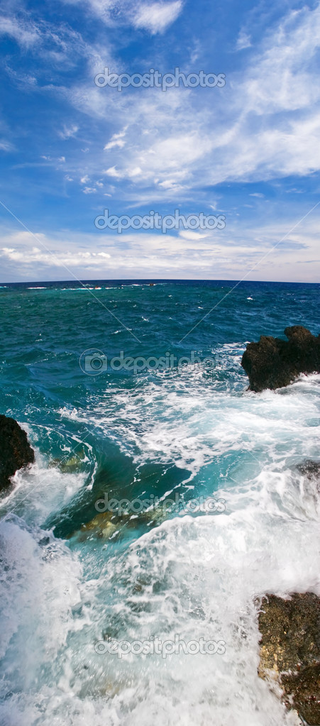 View on the ocean on Big island. Hawaii. USA  Stock Photo #2820564