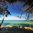 Tropicsl beach — Stockfoto