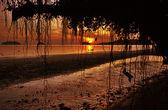 Bel tramonto — Foto Stock