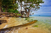 Playa tropicales — Foto de Stock