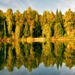 Sunny autumnal lake - Stock Photo