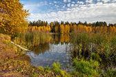 Soliga höstlig sjö — Stockfoto