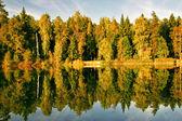 阳光明媚的秋湖 — 图库照片