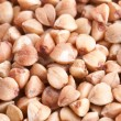 Buckwheat background — Stock Photo