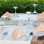 White Fine Table Setting — Stock Photo #3141128