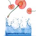 Abstract water splash background — Stock Photo