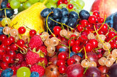 Mixed berries — Stockfoto