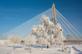 Snowy winter with bridge — Stock Photo
