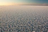 Sea in ice — Stock Photo