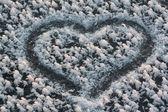 Forma del corazón — Foto de Stock