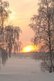 Snowy winter with sunset — Stock Photo