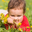 Pensive boy with dandelions — Stock Photo