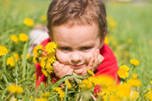 Pleased boy with a bouquet of dandelion — Stock Photo