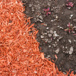 Dirt and mulch — Stock Photo