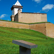 Narva castle. Estonia - Photo