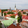 Stock Photo: Tallinn. Estonia