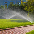Sprinkler of automatic watering in garden — Stockfoto #3912266