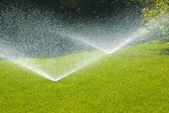 спринклерные автоматические системы полива в саду — Стоковое фото
