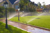 Sprinkler of automatic watering in garden — Stock Photo