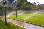 喷淋器的自动浇水在花园里 — 图库照片