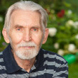 Portrait of elderly man — Stock Photo #2871267