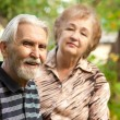 Two pensioners - Foto Stock