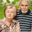 Stock Photo: Two pensioners