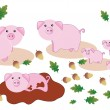 Vector Illustration of Pigs — Stock Vector #2808438