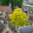 Stock Photo: Roofs of Oxford