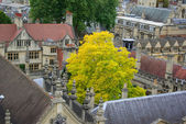 Roofs of Oxford — Stock Photo