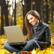 The girl with the laptop — Stock Photo #2910157