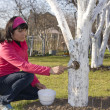 Stock Photo: Young womdisinfecting tree