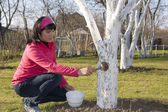 Young woman disinfecting tree — Stock Photo