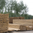 Piles of pine wood planks — Stockfoto