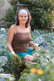 Woman weeding vegetable garden — Stock Photo