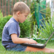 Small boy using notebook — Stock Photo